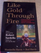 Like Gold Through Fire A Message in Suffering Understanding Transforming Power
