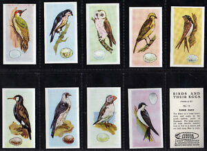 Cigarette cards Birds and their eggs 1954 mint set