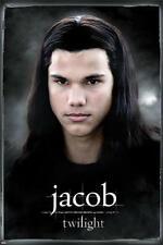 Twilight : Jacob - Maxi Poster 61cm x 91.5cm (new & sealed)