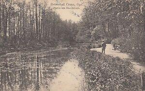 Ansichtskarte Ostpreußen  Ostseebad Cranz  Partie am Storchteich  1920