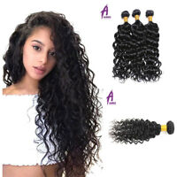300G Indian Water Wave Curly Virgin Hair 3 Bundles Human Hair Extensions Weft