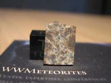 Meteorite Nwa 10290 - Nice L4 with big well formed chondrules (only 5%25 matrix)
