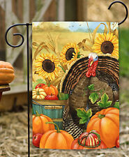 NEW Toland - Hello Turkey - Fall Autumn Harvest Farm Pumpkin Garden Flag