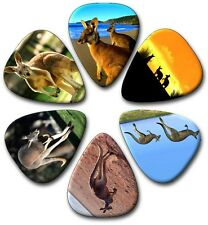 6  MIXED KANGAROO  Guitar Picks ~ Plectrums