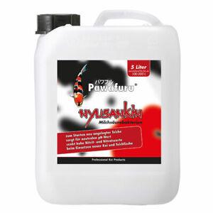 (€3,99/l) 5 L Milchsäurebakterien, probiotische Filterbakterien, Koi, Teich VKF