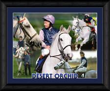 DESERT ORCHID RACE HORSE FRAMED 20x16 INCH PRINT