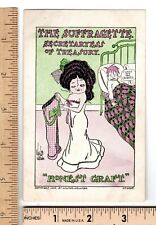 Anti Suffrage Post Card SUFFRAGETTE SECRETARYESS TREASURY 1909 Walter Wellman