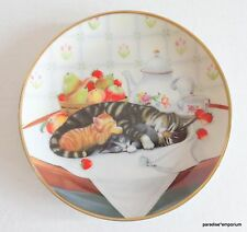 Franklin Mint Cat Collector Plate Cat Nap w/ Coa 1991 Tabby Kitty Cats