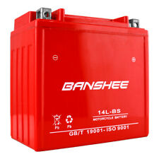 YTX14L-BS High Performance - Maintenance Free - Sealed AGM Motorcycle Battery
