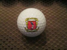 Logo Golf Ball-United States Golf Academy.