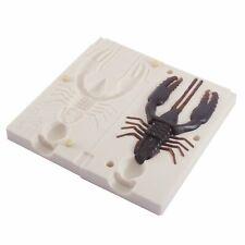 Soft Plastic Crawtube Mold Crayfish Lure 3.5 Inch Bugmolds USA