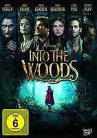 Into the Woods | DVD | Zustand gut