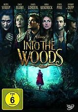 Into the Woods   DVD   Zustand gut