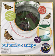 Butterfly Canopy Caterpillars Butterflies Larvae Cocoons Science Discover Kids