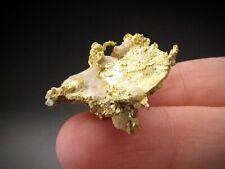 Native Gold, Mariposa County, California