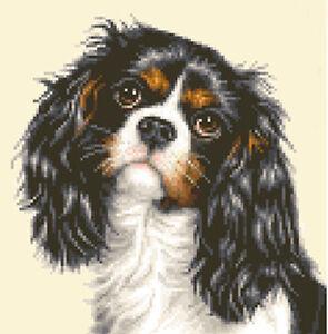 CAVALIER KING CHARLES SPANIEL dog Full cross stitch kit *Jann Designs