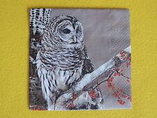 5 stück servietten Owls Eulen uhu kauz Ast napkins 1/4 Snow owl Schneeeulen