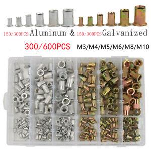 600/300 Rivet Nuts Blind Set Nutsert Zinc Aluminum Threaded Rivnut M3-M10 Kit
