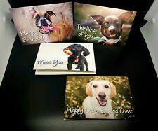 Doris Day Animal League Cards