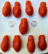 Martino's Roma - Organic Heirloom Tomato Seeds - Premier Paste - 40 Seeds
