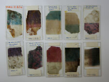 10 Large Microscope Slides -- Geology Related  (Dyed)