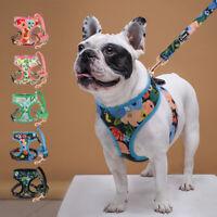 Hundegeschirr und Leine Set Gepolstert Softgeschirr Französische Bulldogge S-XL