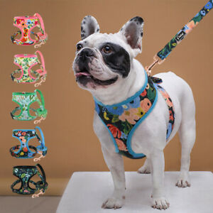 No Pull Dog Harness and Lead set Pet Cat Walking Vest for Small Medium Large Dog
