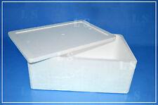 Scatola Polistirolo 40LT cm60x40x24 contenitore termico alimenti salumi formaggi