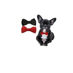 Bow Tie for Dog Pet, Slides onto collar with elastic Red or Black XS to L