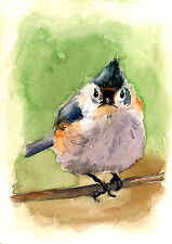ACEO Limited Edition-Angry bird, Titmouse, Art print of a watercolor