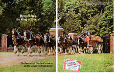 1968 BUDWEISER BEER / CLYDESDALES ~ ORIGINAL 2-PAGE PRINT AD