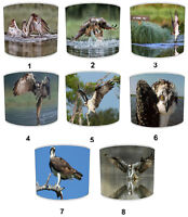 Osprey Bird Of Prey Lampshades Ideal to Match Osprey Bedding Sets & Duvet Covers