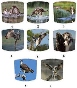 Osprey Bird Of Prey Lampshades Ideal to Match osprey Duvets & Duvet Cover Sets