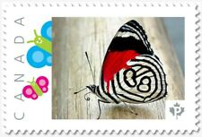 uq. BUTTERFLY = Red/White =Picture Postage stamp MNH-VF Canada 2019 [p19-02sn10]