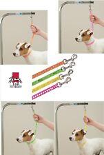 4 Designer PRINT Basic Loop DOG PET For Grooming Table Arm Bath RESTRAINT Noose