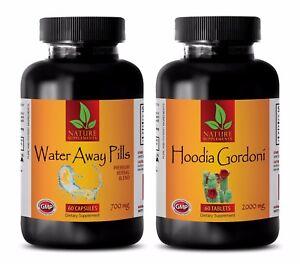 Energy boost drink - WATER AWAY – HOODIA GORDONII COMBO - cranberry extract caps