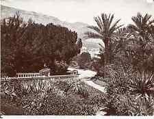 Monaco, Monte-Carlo, Les jardins, Vue générale  Vintage print.  Tirage citrate