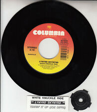 """LYNYRD SKYNYRD White Knuckle Ride & JOE DIFFIE Tearin' It Up 7"""" 45 record NEW"""