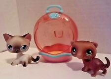 Littlest Pet Shop LPS Brown Ferret 209 Siamese Cat 5 and House Incomplete Set