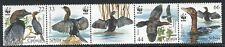 0390 SERBIA 2011 - WWF - Birds - Protected Animal Species - MNH Set