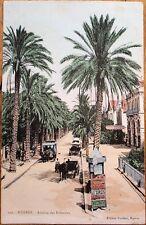 Hyeres, Provence-Alpes-Côte d'Azur, France 1906 Postcard: Avenue des Palmiers