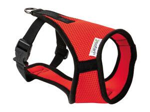 Zoofari Dog Harness