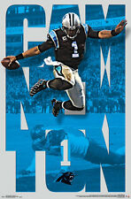 Cam Newton ANYTHING FOR A TOUCHDOWN Carolina Panthers 2016 NFL Football POSTER