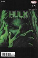 Hulk Comic Issue 1 Limited Variant Modern Age 2017 Tamaki Leon Milla Petit Dekal