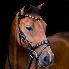 Equestrian   Horse Riding  6beb0091faf66