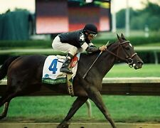 8x10 Color photo TAKE CHARGE LADY  - racing