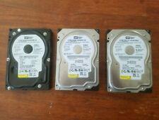 """LOT OF 3 Western Digital 80GB 7200RPM 3.5"""" SATA Desktop Hard Drive WD800JD"""