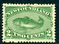 Canada 1896 Newfoundland 2 Cent Green Fish Scott #47 Mint D373