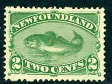 Canada 1896 Newfoundland 2 Cent Green Fish Scott #47 Mint D373