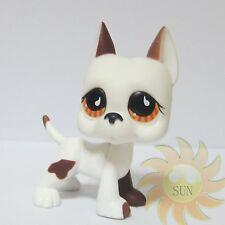 Littlest Pet Shop LPS Animal Toys #750 Great Dane Puppy Dog Teardrop Orange Eyes